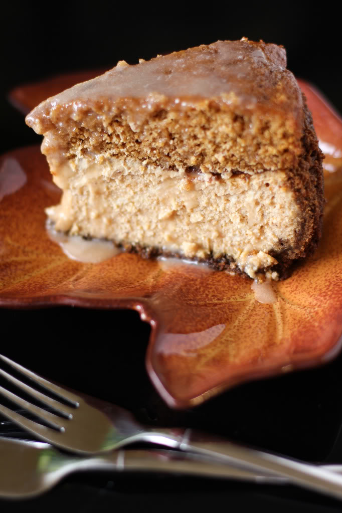 Photo Credit: http://willowbirdbaking.com/2012/10/05/brown-butter-pumpkin-cake-cheesecake-with-salted-caramel/